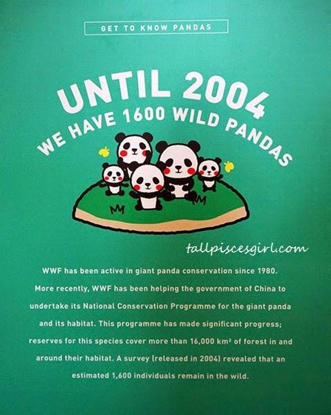 DSC02599 - 1600 Pandas Invasion @ Publika KL #1600PandasMY
