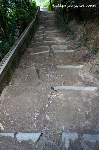 Staircase leading to the waterfall