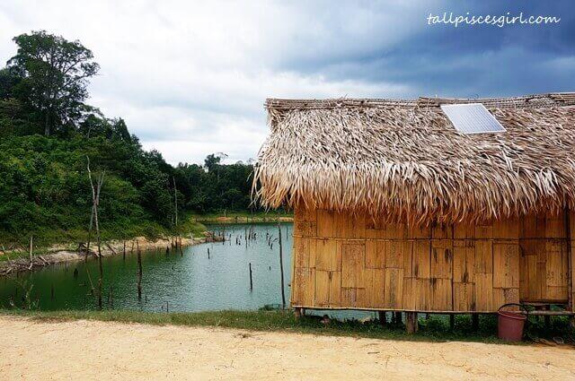 Orang Asli Village, Kampung Chuweh looks simply divine