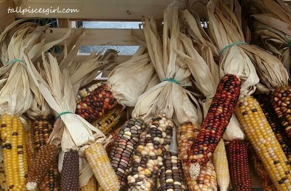 Flint corns