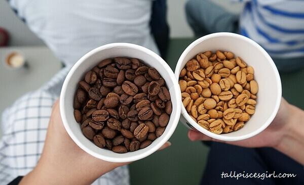 Dark roasted vs Light roasted coffee