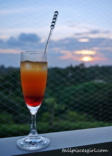 Mocktail X Sunset @ Botanica Mansion