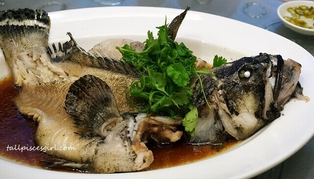 "Steamed Dragon Garoupa with Superior Soy Sauce ""Hong Kong"" Style"