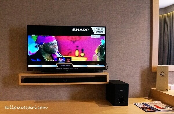 TV with satellite channels and audio system with Bluetooth technology