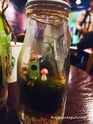 Cute terrarium decors in Starbucks Bottle