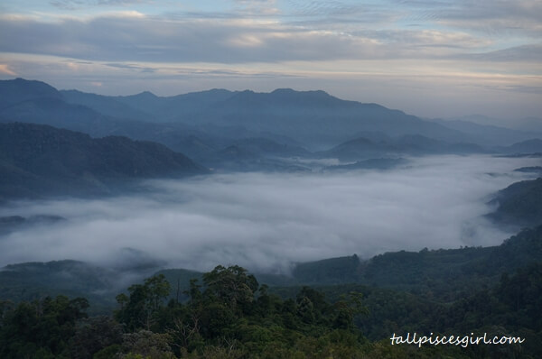 Sea of Clouds at I yerweng 7 | 10 Things You Need to Know About Sea of Clouds @ I-Yerweng, Betong