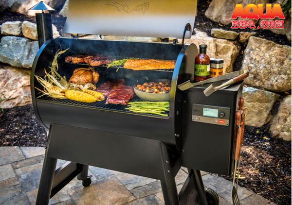 What to Know About Grills: You'll have delicious cuts of meat and tasty vegetables if you master the grill and don't overcook your food